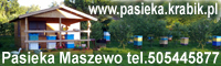 Pasieka Maszewo. Polski miód. Sprzedaż miodu zachodniopomorskie.